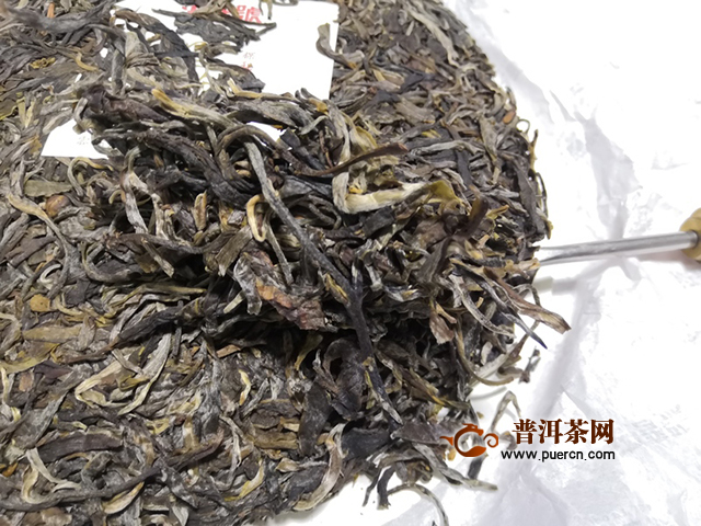 苦涩相继,雪藏以内:2019年洪普号探秘系列雪藏生茶