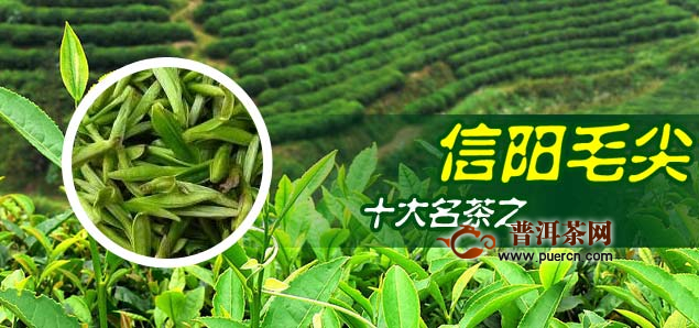 绿茶那个品牌比较好图片