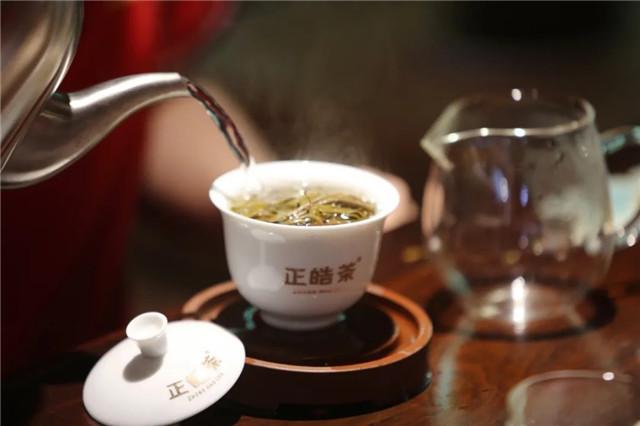 正皓茶:品茶回甘,享岁月滋味