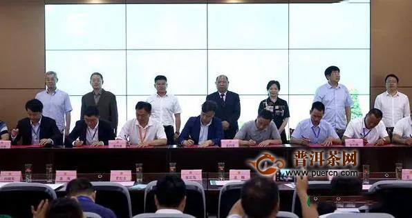 贵州茶博会铜仁市春茶采购商大会现场签约超10亿元大单