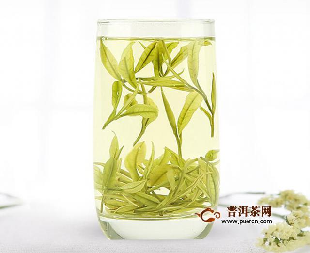 饮用安吉白茶片有什么功效与作用