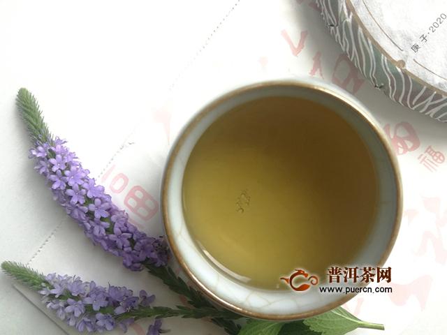 """薛定谔的""""老班章"""":2020年吉普号藏山603藏峰生茶"""