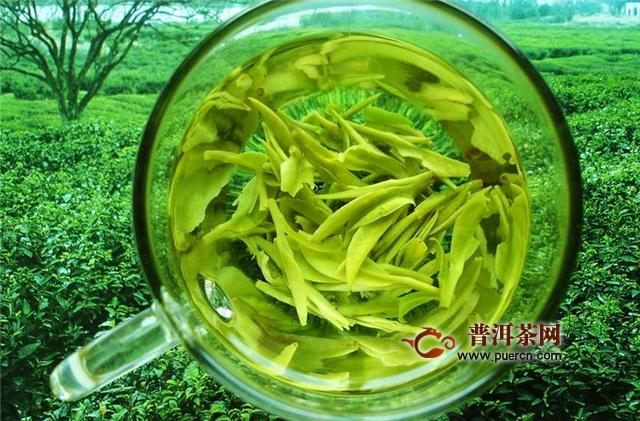 杭州龙井茶是绿茶还是红茶