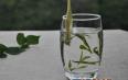 白茶传统的制作工艺流程