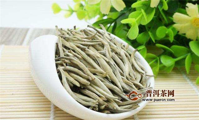 银针是什么茶?红茶还是绿茶?