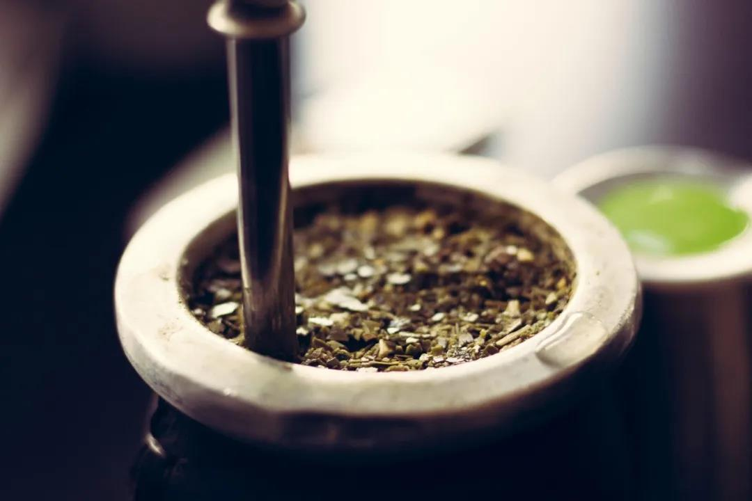 """普洱茶的渥堆与""""生物大爆发"""""""