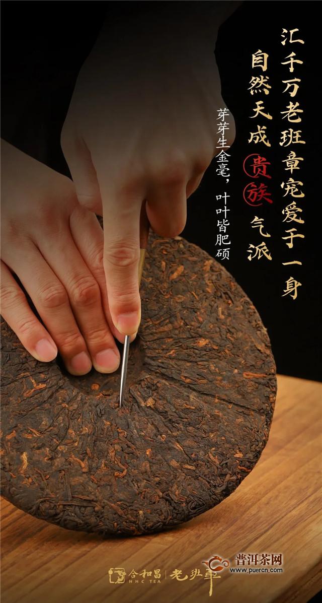 熟茶的极致品质,合和昌茶中麟凤!