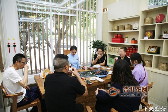 松鹤铁饼·经典传承:下关全国品鉴会圆满举行!