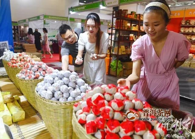 2020湖南茶文化节在长沙开幕