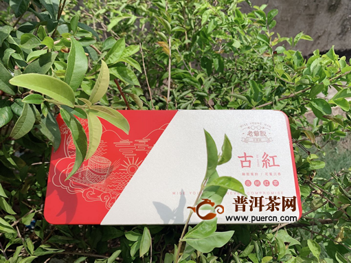 一杯茶,品人生沉浮;平常心,造万年世界:2018年老爷说不将就古红滇红160克试用报告