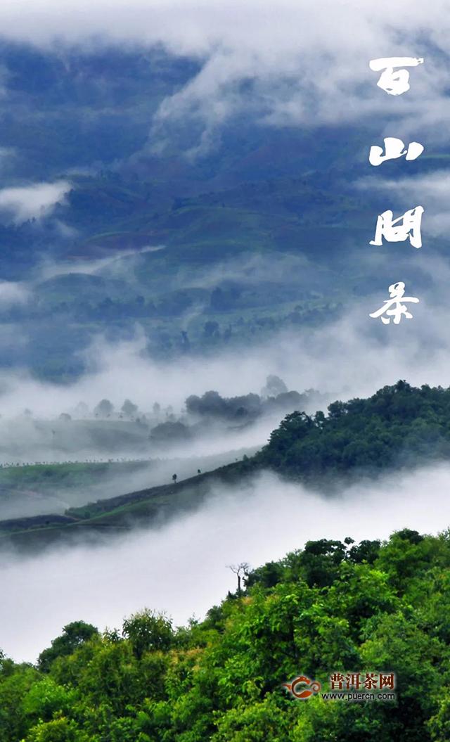七彩云南庆沣祥百山问茶:云南古茶第一村