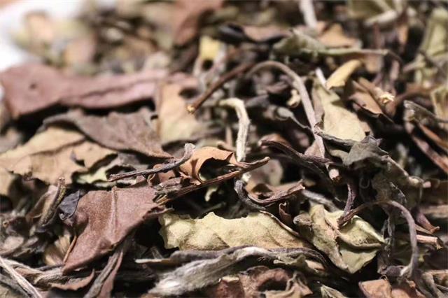 2020年上半年(1—6月),白茶线上销售趋势如何?