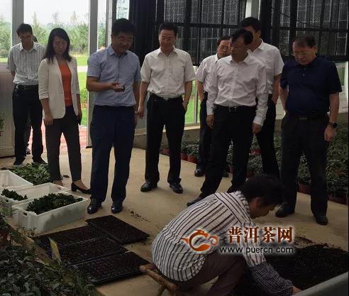 慕德贵率队调研江苏省茶产业