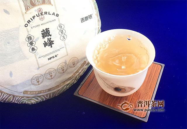 【茶言观色】遇见吉普号2020年藏山603藏峰