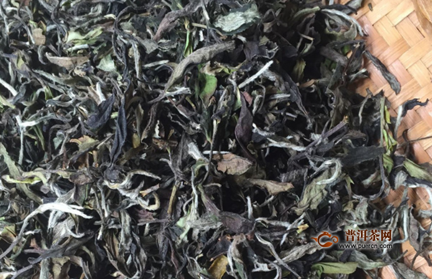 白茶有没有祛斑的效果