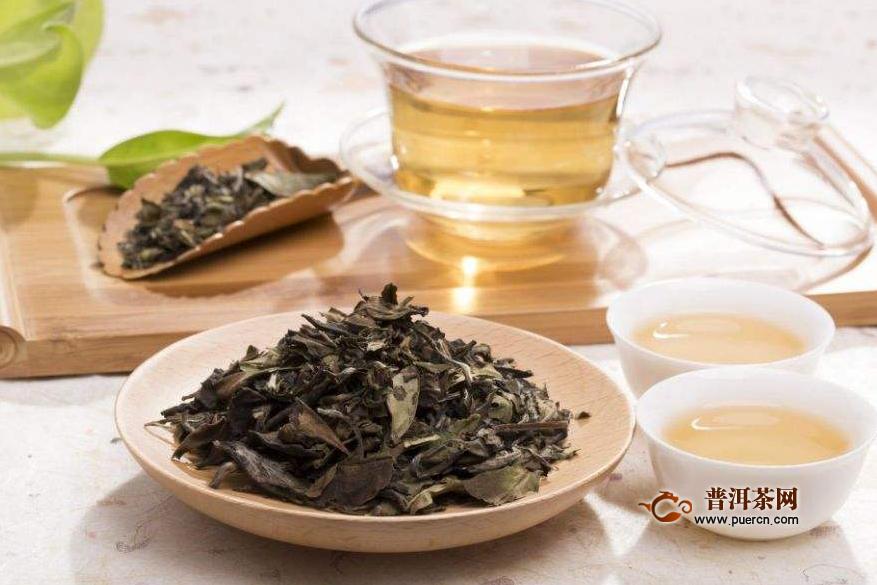 白茶是凉性还是热性的
