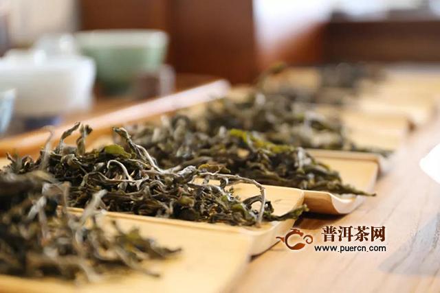 第十七期茶叶进化论重新招生啦!