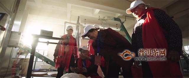 五洲同唱,《大益歌》全新MV华彩上线