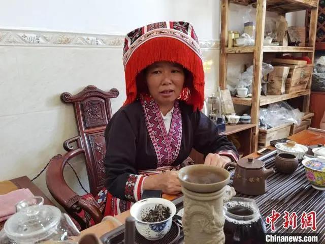 """广西梧州大山深处飞出茶""""凤凰"""" 千年六堡茶成致富黄金叶"""