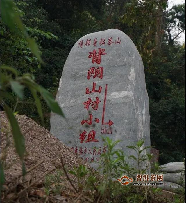 茶企发展的中国道路与品牌故事