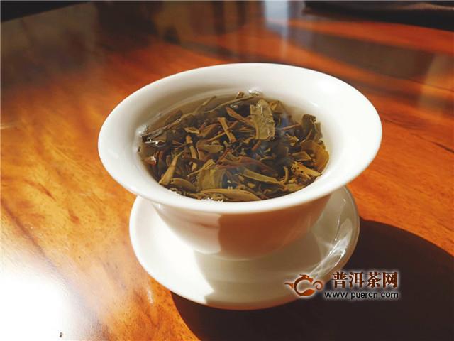 普洱茶投资分析:普洱茶如何才能进入年轻人的法眼