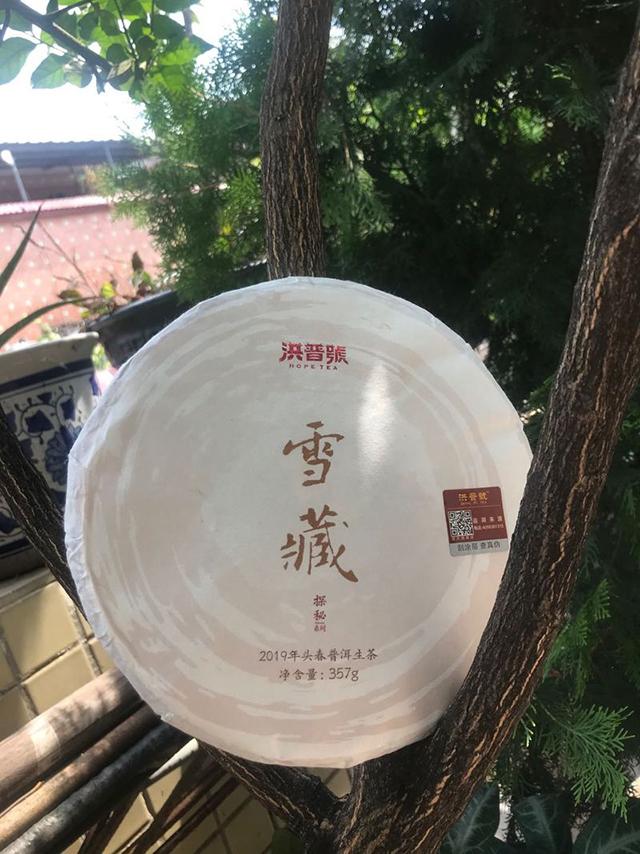 简单享受古树茶:2019年洪普号探秘系列雪藏生茶
