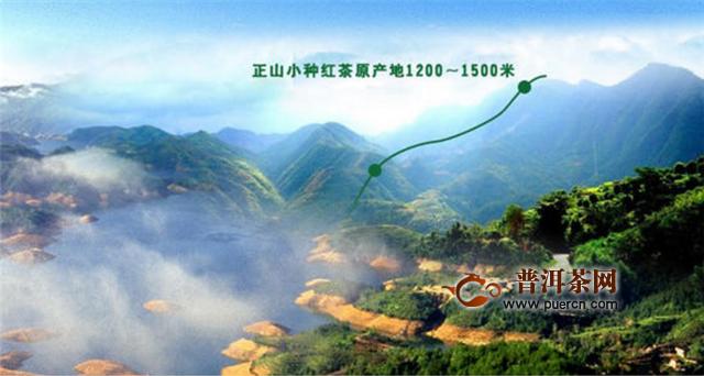 金骏眉、大红袍、正山小种的产地的区别