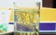 金银花养生茶的相关介绍