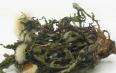 玫瑰花蒲公英长期吃有副作用吗