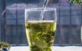新鲜蒲公英根可以用来泡水喝吗