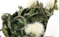 蒲公英玫瑰花可以用多少度水泡