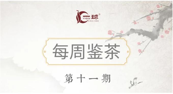 一球茶业每周鉴茶:2015景迈