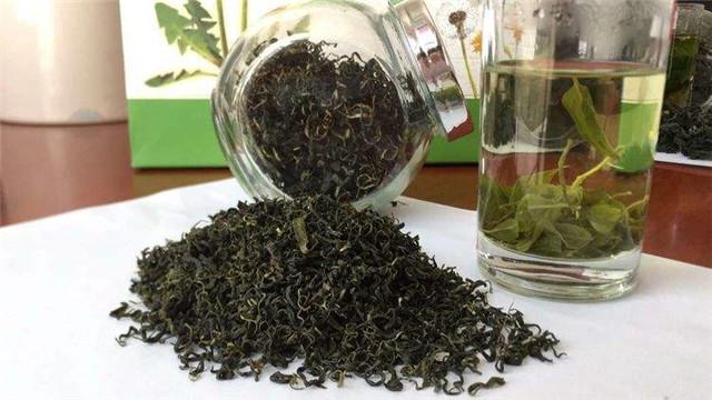 """第七大茶系""""山西药茶""""规划发展见闻"""