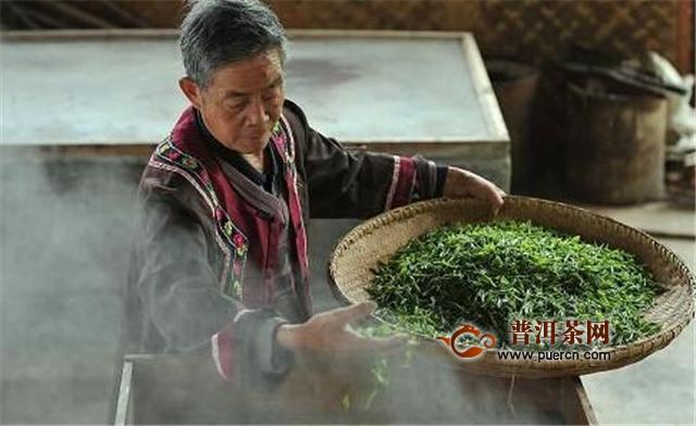 毛尖、绿茶的工艺流程的区别