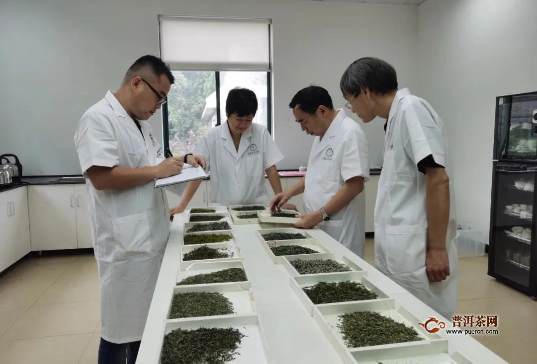 中国茶叶学会举办2020年全国茶叶品质评价会