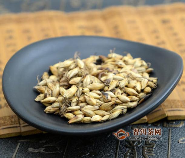 大麦茶是什么茶叶种类
