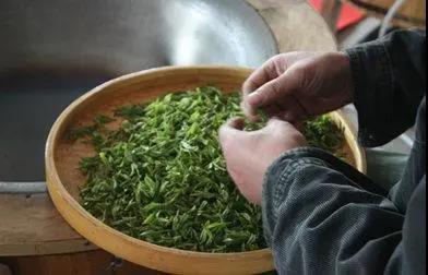 工茶和机制茶有哪些区别?哪种更好?