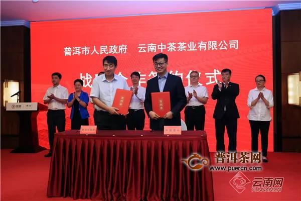 中国茶叶云南原料中心成立