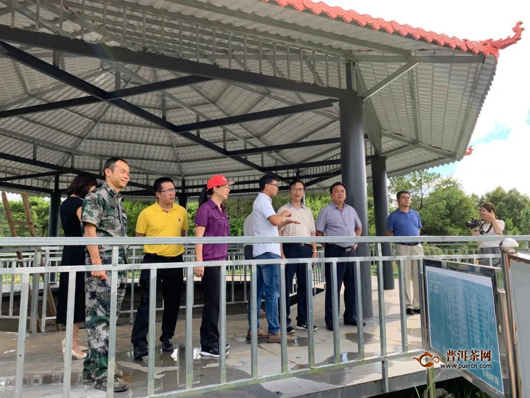 桂林市人大常委会调研组到梧州市考察六堡茶产业