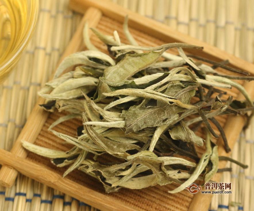 一斤白牡丹茶多少钱