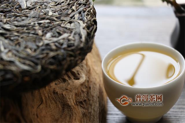 云南大叶种茶的特点