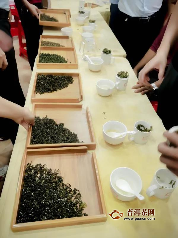 紫金蝉茶工艺大比拼,致力打造金牌品质
