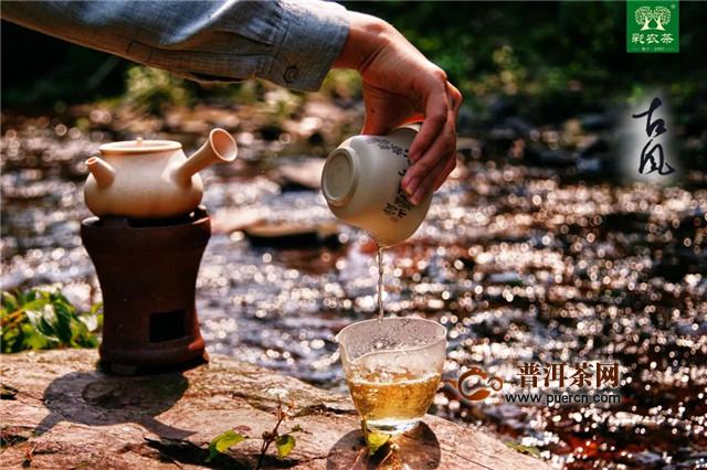 彩农茶:留根泡法
