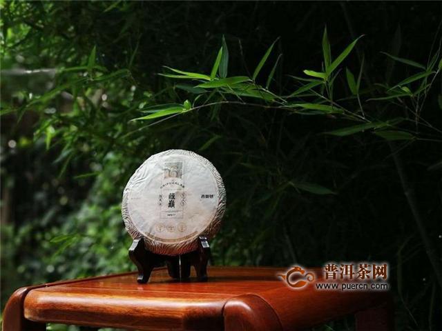 吉普号2020年藏山625藏巅:气息深厚,梅子香显