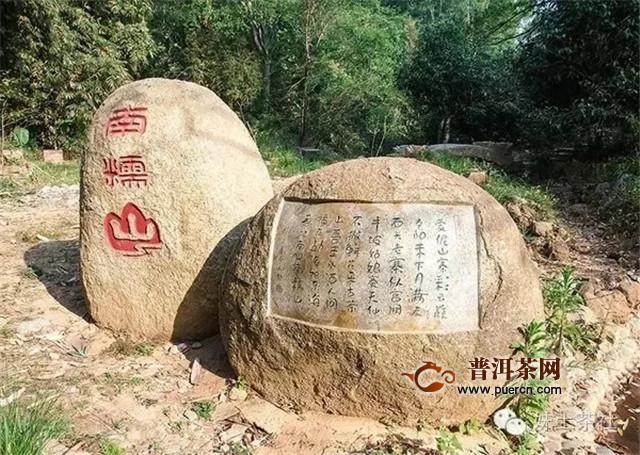 """勐昌号普洱茶话 探索版纳茶区茶山""""隐秘的角落""""(下)"""