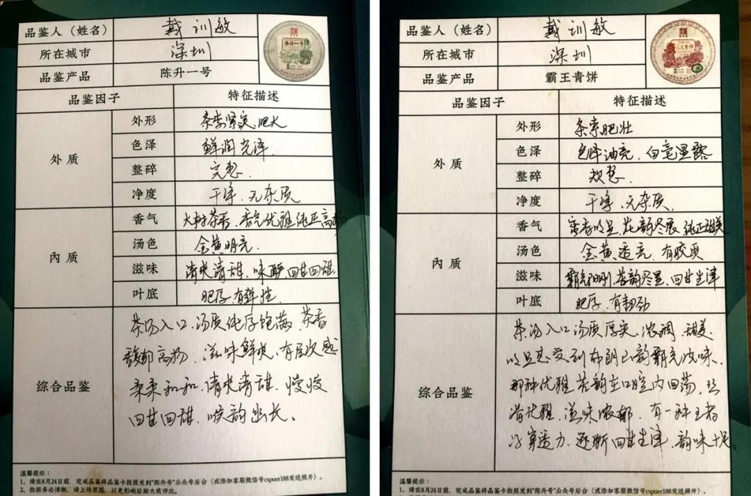 品鉴官们如何评价2020陈升一号、霸王青饼(第一期)