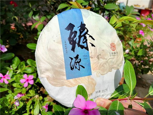 布朗之臻,勐海之源:2020年兴海茶业臻源生茶