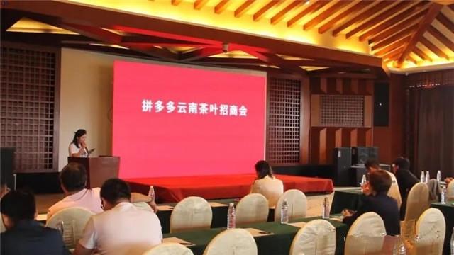 云南省普洱茶协会工作简讯:行业联合拼多多促进内循环消费
