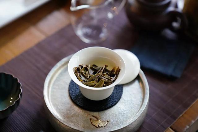 茶叶进化论就是一部进化论!每个人的学习和升华,都是对茶叶的贡献