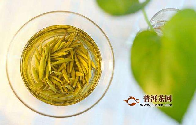 黄茶的功效主要包括哪些